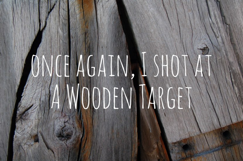 Once again, I Shot at a Wooden Target