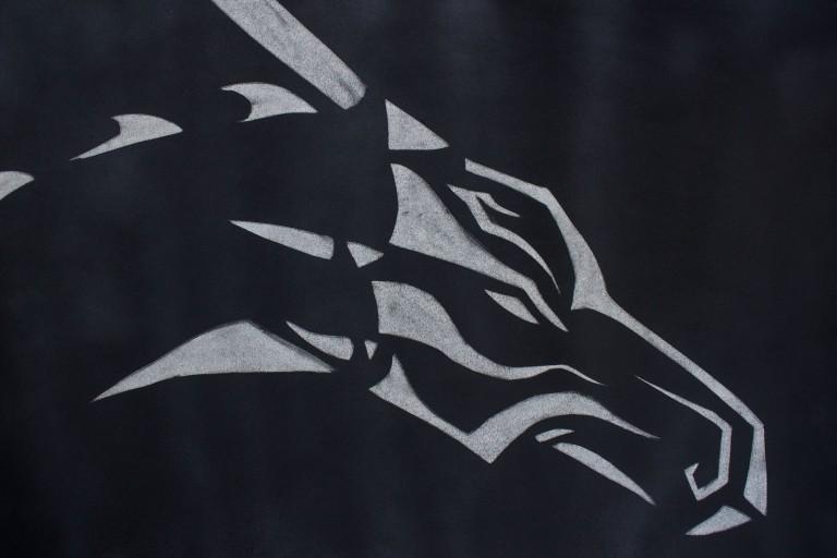 Dragon 1.jpg